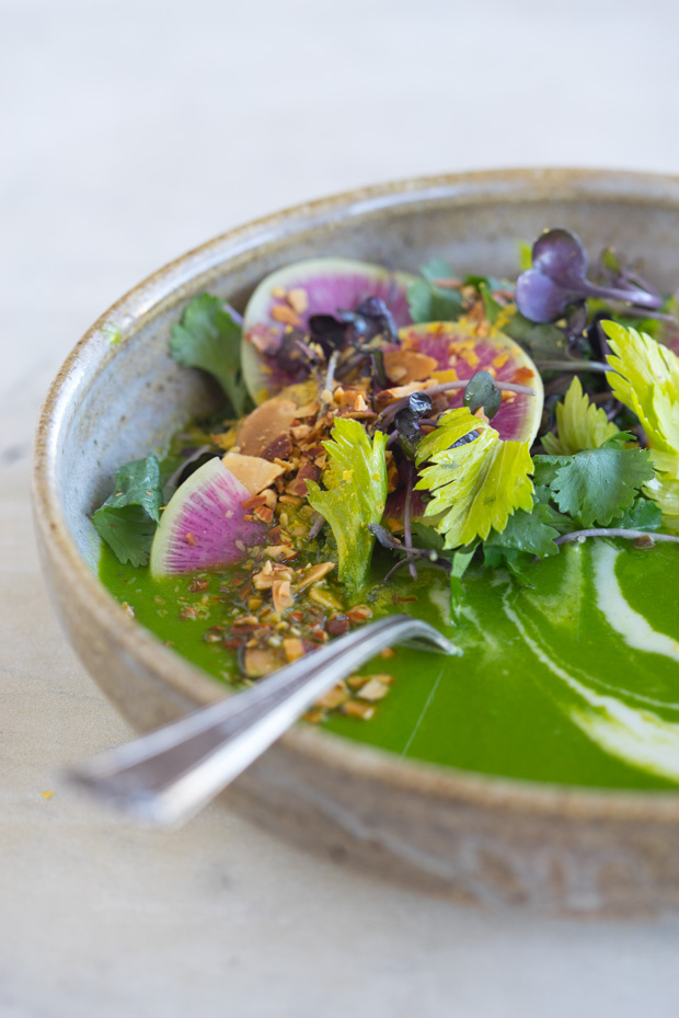 Ten Ingredient Alkalizing Green Soup