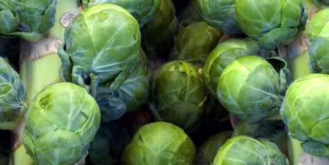 Golden-Crusted Brussels Sprouts Recipe - 101 Cookbooks
