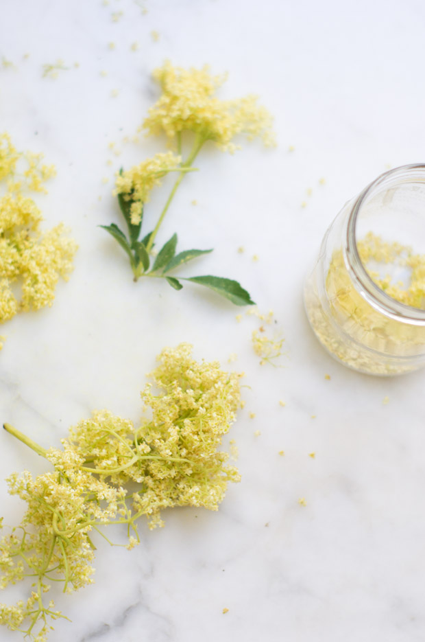 Elderflower Coriander Vodka