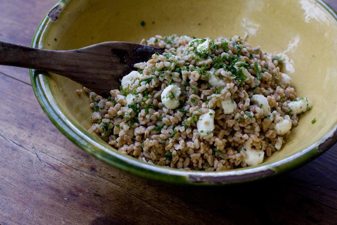 farro salad farro and mushroom burgers summer farro salad farro ...