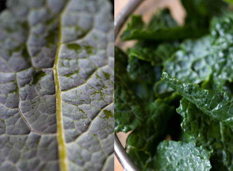 Garlicky Greens Recipe