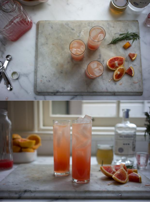 Blood Orange Gin Sparkler Recipe - 101 Cookbooks