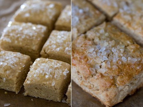 Maple Syrup Scones Recipe - 101 Cookbooks