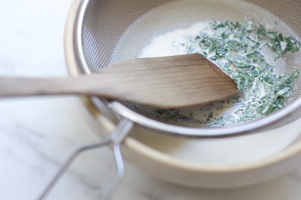 Receta de yogurt helado de menta