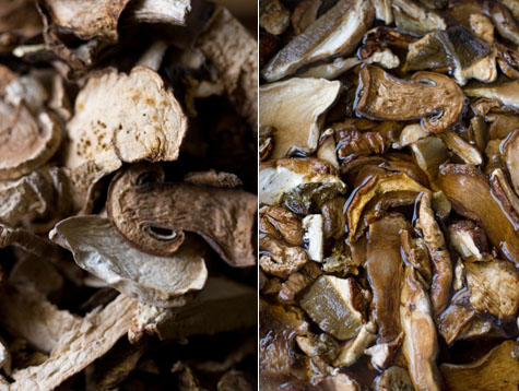 Porcini Mushroom Soup Recipe