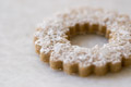 Swedish Rye Cookies recipe
