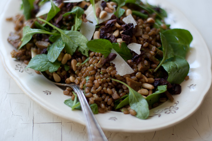 Arugula Pesto Wheat Berries Recipe - 101 Cookbooks
