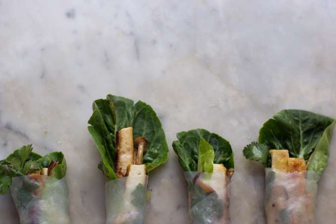 Wintery Spring Rolls Recipe - 101 Cookbooks